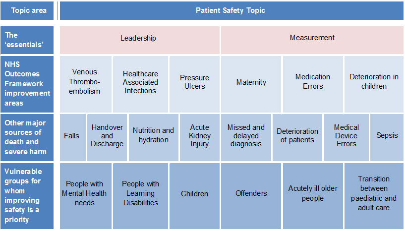 Table showing National Patient Safety Priorities