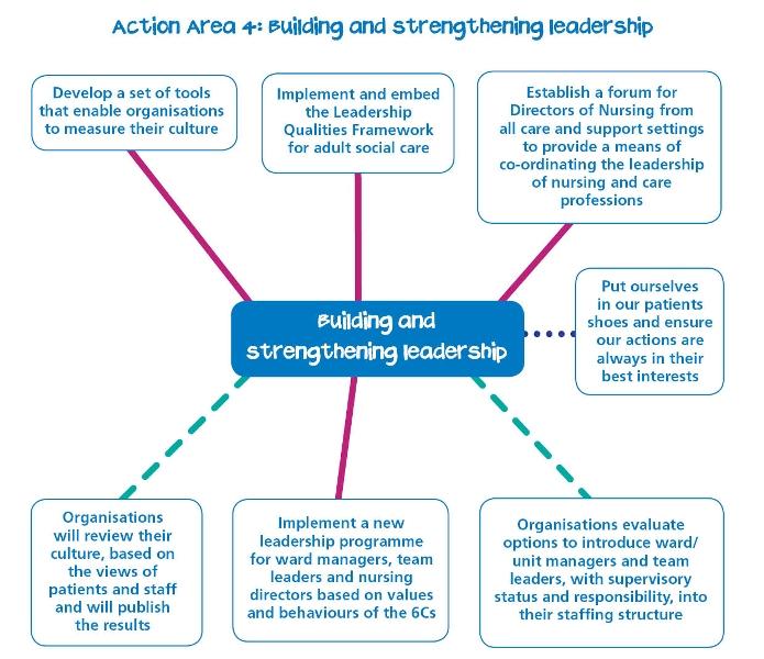 6 c's nursing strategy