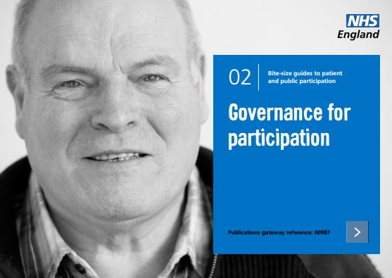 Bite-size guide 2: Governance for participation