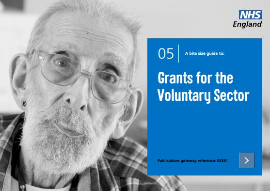 Bite-size guide 5: Grants for the Voluntary Sector