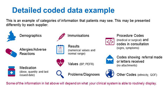 Image showing examples of categories of information that patients may see. Demographics, Immunisations procedure codes, allergies/adverse reactions, results, code showing referral made of letters, medication, values, problems/diagnoses and other codes