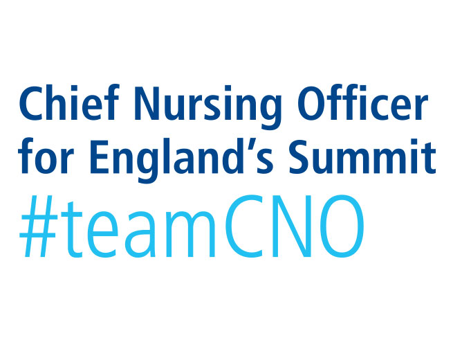 Chief Nursing Officer for England's Summit #teamCNO