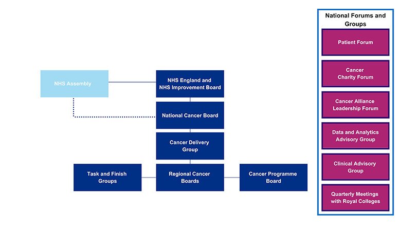 NHS Cancer Programme governance structures to deliver the NHS Long Term Plan. The main board for the programme is the National Cancer Board which reports to the NHS England and NHS Improvement Board. The NHS England and NHS Improvement Board and the National Cancer Board both receive input from the NHS Assembly. Reporting into the National Cancer Board is the Cancer Delivery Group and beneath that group are regional cancer boards. Reporting into the regional boards are the Cancer Programme Board and Task and Finish Groups. Task and Finish Groups work on specific projects for a set period so we can make the most of the expert advice of our stakeholders. There are also a number of national groups and forums that input into the work of the NHS Cancer Programme. The rest of the web page sets out the work of the Task and Finish Groups, as well as the national forums and groups, in more detail.